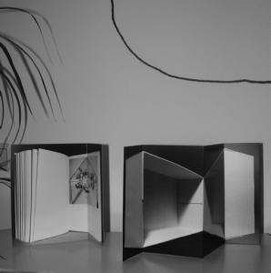 Alexandra Leykauf, Spanische Wand / Katoptrische Experimente, 2013. (1)