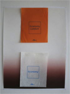 Gabriel Kuri - Economy Comfort (vertical), 2010