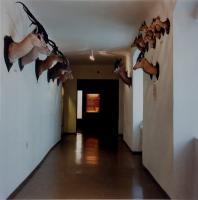 """Candida Höfer - """"Haus der Natur, Salzburg"""", 1996."""