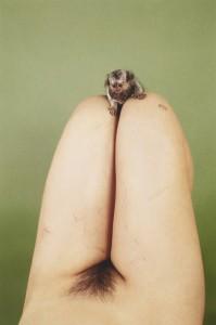 Ryan McGinley - Marmoset (LSD), 2012.