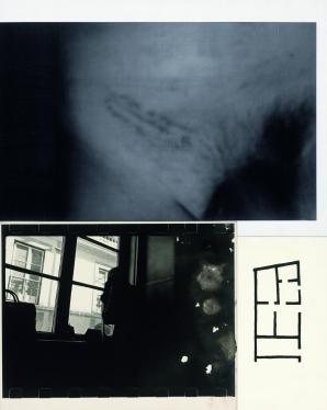 Julião Sarmento - Scar and Window, 2012.