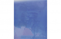 James Welling, FDB9, 2009-2012.