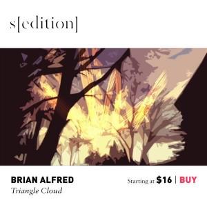 Brian Alfred, Triangle Cloud, 2012.