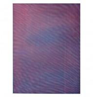 Tauba Auerbach - MESH/MOIRE IV, 2012.