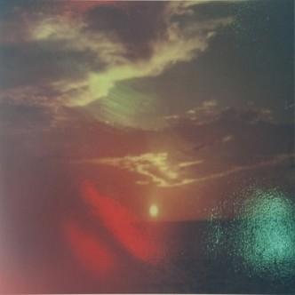 Rachel Harrison, Sunset Series, 2013.
