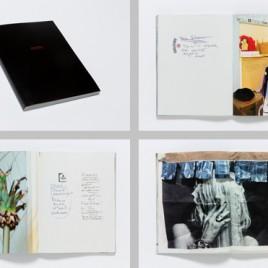 2 new David Hominal editions 'Through the Windows'.