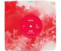 Richard Mosse, The Enclave (Vinyl), 2013.