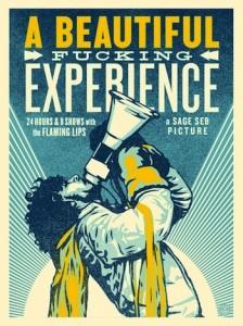 Shepard Fairey, A Beautiful Fucking Experience, 2013.