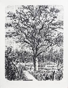 William Kentridge, Stone Tree I, 2013.