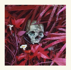 Richard Mosse - The Enclave (outer sleeve) - 2014