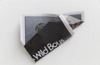 William S. Burroughs (Wild Boys) , 2015