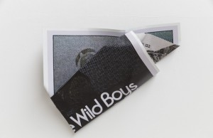 William S. Burroughs (Wild Boys) , 2015
