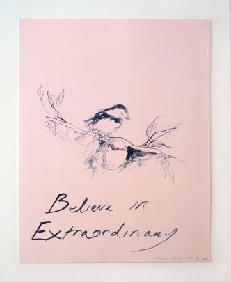 Tracey Emin, Believe in Extraordinary, 2015