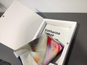 """Katharina Grosse, """"Who, I? Whom, you?"""", 2014"""