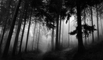 Robert Longo - Fairmount Forest - 2014