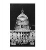 Robert Longo - Capitol Detail - 2017