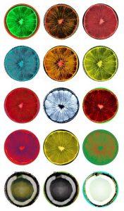 Wade Guyton \ Walker -Fruit Stickers -2010