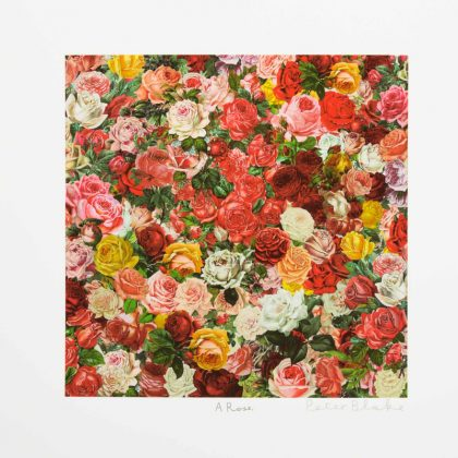 Sir Peter Blake – A Rose, is a Rose, is a Rose – 2017