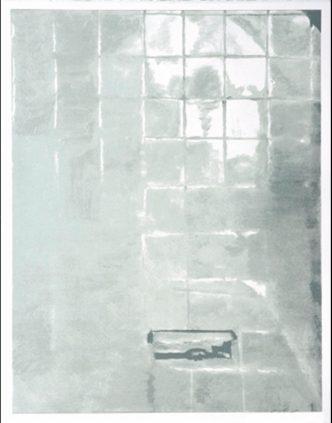 Luc Tuymans -Tiles - 2005