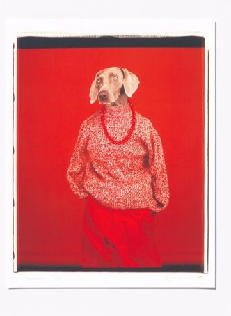 William Wegman - Casual - 2018