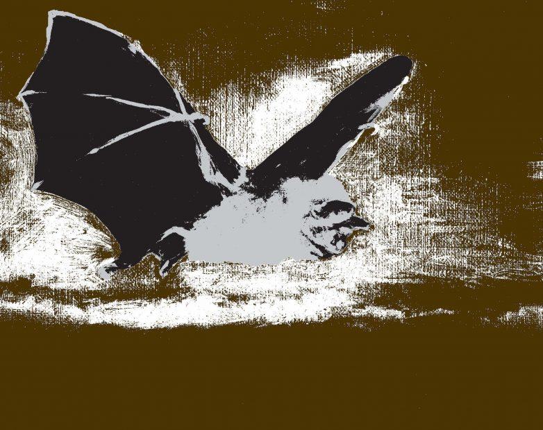 Monster Chetwynd – Bat Opera (Heavy Metal) – 2019