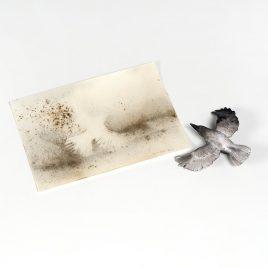 Cai Guo-Qiang - Murmuration
