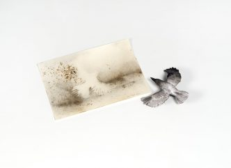 Cai Guo-Qiang - Murmuration Box - 2019