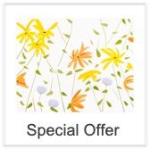 Special Offer: Alex Katz - Summer Flowers II - 2017
