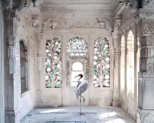 Karen Knorr - A Place Like Amravati 2, Udaipur Palace, Udaipur, 2011 (from the series India Song) - 2020