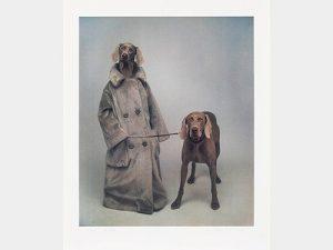 William Wegman - Dog Walker - 2020