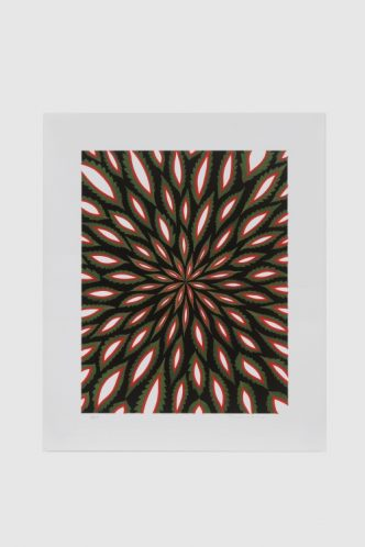 Fred Tomaselli -Scanner - 2020