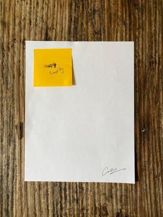 Cory Arcangel - SimplySimplify (Professional edition)- 2020
