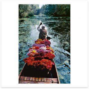 Flower Seller. Dal Lake, Srinagar, Kashmir. 1996.