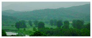 Sojung Jun - Green Screen - 2021